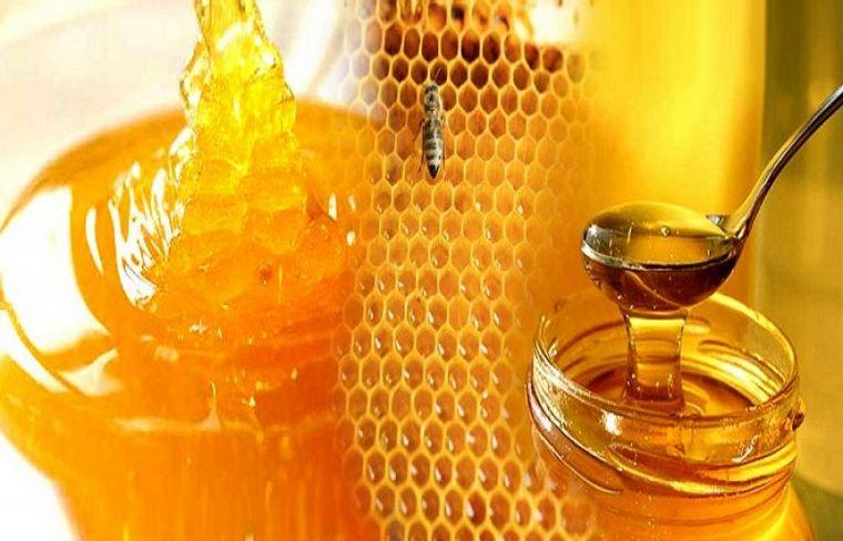 Как образуется мед. Соты